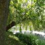 der See mit seinem wohltuendem Grün